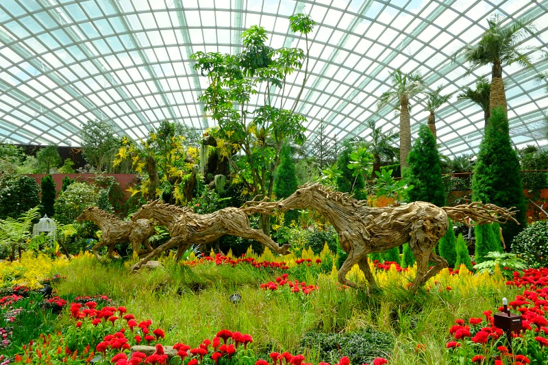The flourishing and artistic floral exhibits inside the Flower Dome