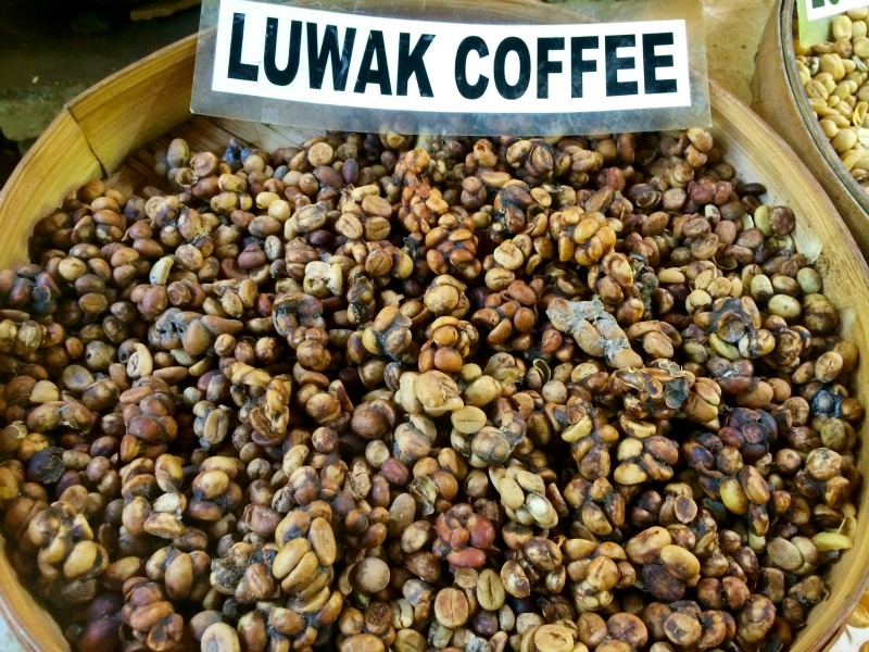 The Kopi Luwak is one of the best tasting coffees in the world