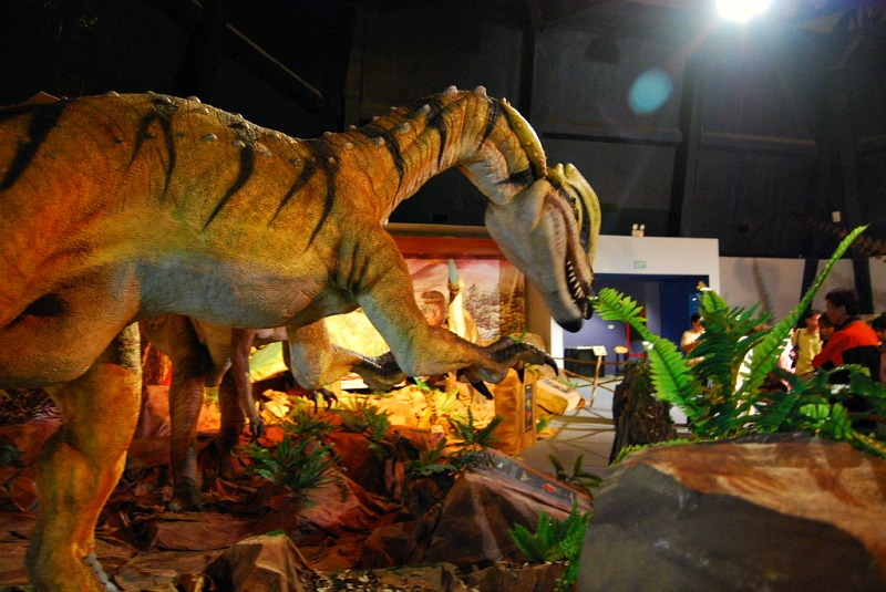 Kids and adults alike will love the exhibits inside Singapore Science Center