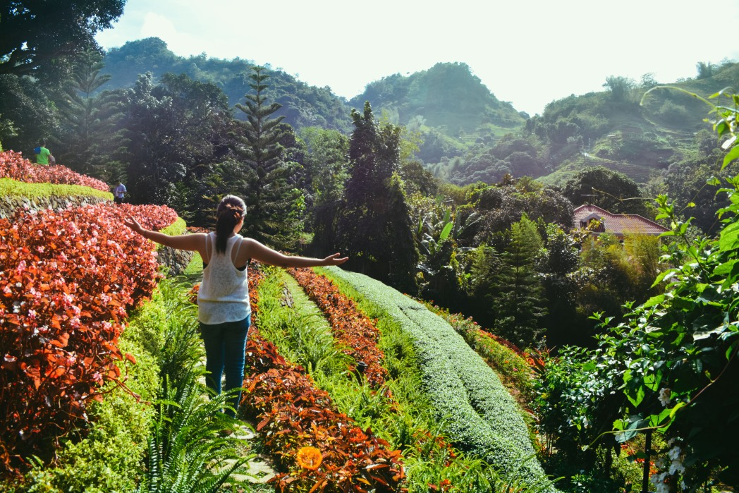 The striking terraces of flowers in Cebu City