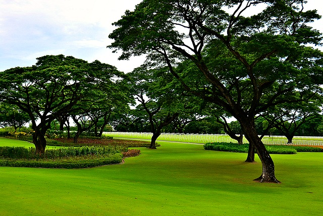 The striking green scenery of Manila American Cemetery and Memorial